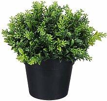 Holibanna Gefälschte Grüne Pflanze Bonsai
