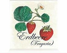 HOLZBLOCK Shabby ERDBEERE Küche Dekoration Regal Frucht Motiv Vintage