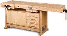 Holzkraft Einbauschrank für HB 2007 / HB 2010