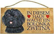 Holzschild Tierschild Hund Deko Bolonka Zwetna