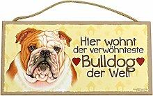 Holzschild Tierschild Hund Deko Bulldogge