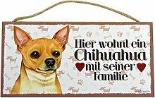 Holzschild Tierschild Hund Deko Chihuahua