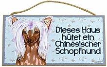 Holzschild Tierschild Hund Deko Chinesischer Schopfhund