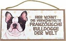 Holzschild Tierschild Hund Deko Französische Bulldogge