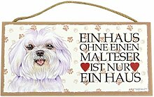 Holzschild Tierschild Hund Deko Malteser