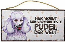 Holzschild Tierschild Hund Deko Pudel