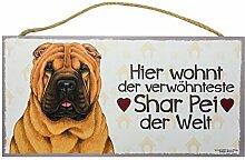 Holzschild Tierschild Hund Deko Shar Pei