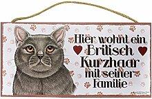 Holzschild Tierschild Katze Deko Britisch Kurzhaar