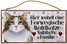 Holzschild Tierschild Katze Deko Norwegische Waldkatze