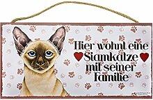 Holzschild Tierschild Katze Deko Siamkatze