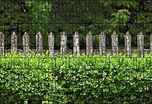 Holzzaun und Buxus - Zaun Sichtschutzstreifen für