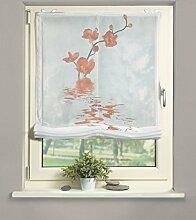 Home fashion 69812-775 Raffrollo Voile, 140 x 120 cm, orange