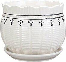 Home / Office Nette Chinesische Kleine Vase