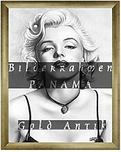 Homedecoration Bilderrahmen Panama 63 x 85 cm Gold