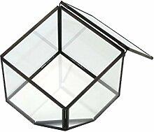 HomeDecTime Glas Geometric Terrarium Indoor