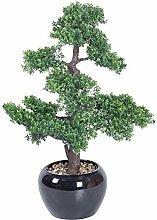Homescapes Künstlicher Bonsai Baum getopft