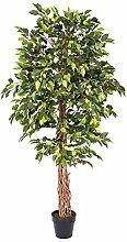 Homescapes Kunstbaum Ficus Benjamini grün 180 cm
