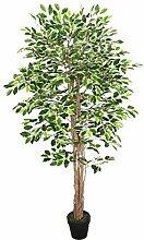 Homescapes Kunstbaum Ficus Benjamini grün weiß