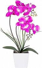 homeseasons LED-beleuchteten Künstliche Blumen