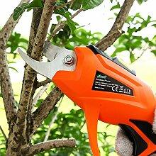 HomeYoo Professionelle Elektrische Gartenschere,