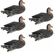 Homyl 5 Stück Schwimmende Ente Lockvogel