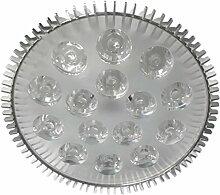 Homyl E27 Pflanzenlampe LED Grow Lampe Pflanzenlicht Wachstumslampe für Treibhaus Zimmerpflanzen Hydrokultur Gemüse und Blumen - Multi, 15W
