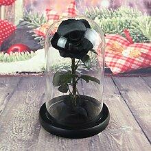Hongyan Rose Valentinstag Geburtstag