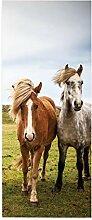 HOPAX EIN Paar Pferde Türaufkleber