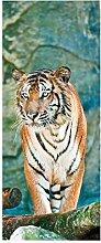 HOPAX Handbemalter Tiger Türaufkleber