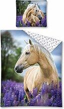 Horse Club Pferde Bettwäsche Set 140 x 200 cm
