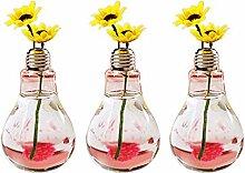 Hosaire 3x Glas Vase Kreative die Glühbirne