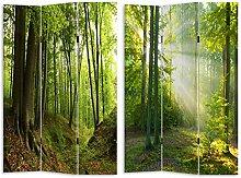 HTI-Line Paravent Waldweg Sichtschutz Spanische