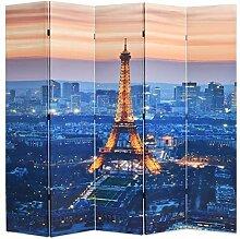 HUANGDANSP Raumteiler klappbar 200 x 170 cm Paris