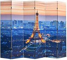 HUANGDANSP Raumteiler klappbar 228 x 170 cm Paris