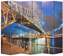 HUANGDANSP Raumteiler klappbar 228 x 170 cm Sydney