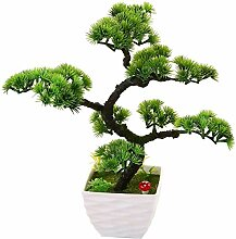 HUAPENLL Künstlich Bonsai Baum, Begrüßung