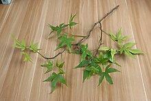 HUAYIFANG Die Blätter Der Maple Leaf