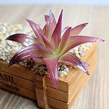 HUAYIFANG Die Kleine Grüne Pflanzen, Fleischigen Mundes Aloe Vera Accessoires Blumen Kleine Grüne Pflanze Simulation Und Emulation Pflanze Lila