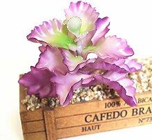 HUAYIFANG Emulation Fleischige Pflanze Blumen Und