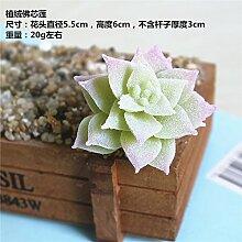 HUAYIFANG Zubehör Emulation Fleischige Pflanze