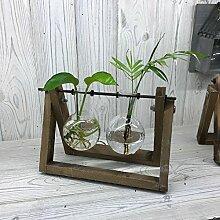 Hydrokultur Home Décor recyceltem Glas, Töpfe,