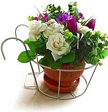HZA Continental Eisen-Geländer Blumen-Racks, Hängende Orchideen Töpfe Regal, Windowsill Balkon Plant Rack Hochwertige Materialien ( farbe : Weiß )