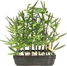 I.GE.A. Kunstpflanze Bambus, Mit Natursteinen B/H: