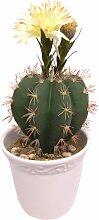 I.GE.A. Kunstpflanze Kugelkaktus mit Blüte (1