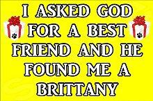 Ich fragte Gott für ein Best Friend und er