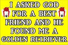 Ich fragte Gott für ein Best Friend und er gefunden Me A Golden Retriever Hund–Jumbo Magnet als Geschenk/Geschenk