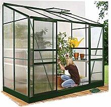 Ida 5200 Alu-Anlehngewächshaus grün HKP 6 mm 5,2