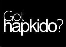 Idakoos Got Hapkido? - Sport - Aufkleber Packung x4