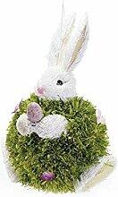 Idee Dekoration Ostern, Eier Hase Ostern, Dekorationen, Ostern, Geschenk Ideen für Ostern