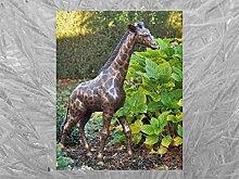 IDYL Bronze-Skulptur Kleine Giraffe   104x24x68 cm